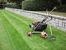 Lawn mowing services Homebush Strathfield Area Preview