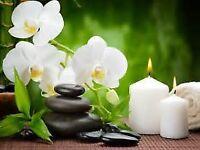 Swedish Massage/Hot Stones/Reflexology/Reiki- Combination Massage Luxury Treatment