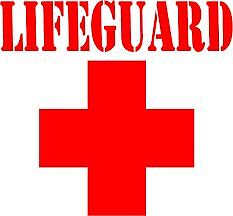 Lifeguard/Swim Instructor Available To Come To You