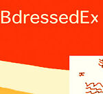 Best Dressed Express