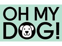 Dog Walker Crouch End, Highgate, Hampstead & Muswell Hill