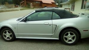 2003 Ford Mustang Silver Convertible