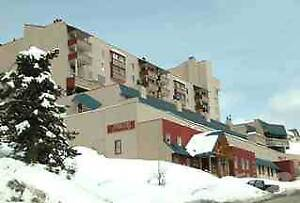 Condos for Sale in Big White, British Columbia $219,900