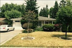 House For Rent In Mill Pond Richmond Hill