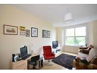 Well Presented One Bedroom Apartment with lounge in Finsbury Park N4! With Modern Kitchen