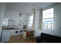Stunning 1 bedroom with a spacious roof terrace and high ceilings throughout in Islington N1