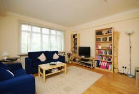 Luxury Beautiful apartment with a double bedroom and large amazing living room in Marylebone NW1