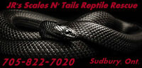 JR's Scales N' Tails Reptile Rescue