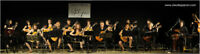 Cours de guitare de qualité - classique et acoustique