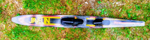 Javelin Water Ski.$35.00