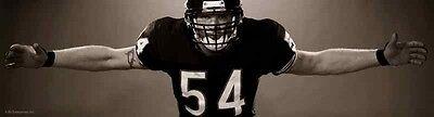 Brian Urlacher Chicago Bears Huge 19 5  X 72  Bear Hug Poster Mint In Tube