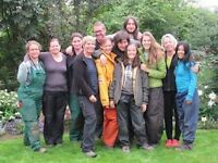 Forestry and gardening activities in Iceland