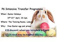 Lisburn tutoring Transfer test AQE/GL/11+, Primary, GCSE Science, Biology, Chemistry, Maths, English