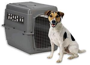 Large Dog Cargo Crate Windsor Region Ontario image 1