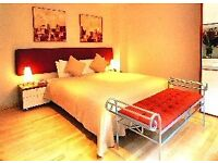 ***PADDINGTON*** - Cozy Studio Apartment to Rent