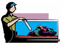 I can clean your aquarium from 10 pound