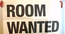 Gumtree Peterborough Room For Rent