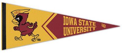 University of IOWA HAWKEYES Official NCAA Team Premium Felt PENNANT