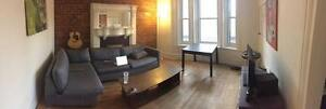 4 1/2 Apartment Sublet For May and June (Downtown Montreal)