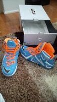 Brand new Lebron XII Elite Series Collectors addition Size 12