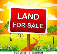 RM OF SCOTT - 157 Acres of farm land for sale
