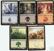 MTG Basic Land 100
