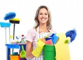 Experienced Part-Time Domestic Cleaners Required in Knebworth & Stevenage.