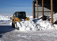 skid steer for hire in the salmon arm and greater area