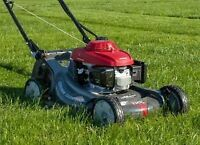 Grass cutting landscaping tree removal yard cleanup COBOURG