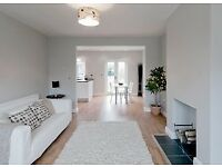 07490816384 painting decorating / handyman housing maintenance