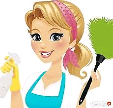 Profesional cleaner