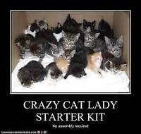 CRAZY CAT LADY CLEANING