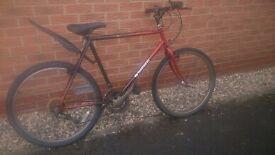 good road bike