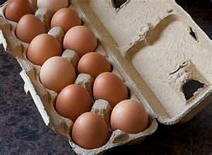 Fresh Daily Tasty Chicken Eggs