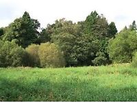 free land list numerous plots at various locations