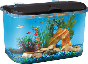 5 GALLON ROUNDED CORNER With LED LIGHT