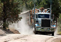 Log Haul Drivers & Log Loader Operator