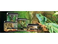 **££££ WAITING** WANTED - REPTILE STUFF - Glass or Screen terrarium, Vivarium, (LIZARD)
