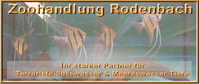 Zoohandlung-Rodenbach