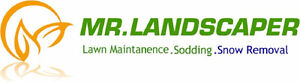 LAWN MAINTENANCE, CLEAN UP'S, GRASS CUTTING, LAWN MOWING