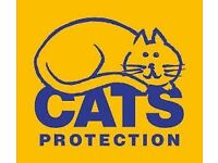 Cats Protection Truro - Volunteer Joint Coordinator
