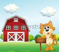 ~~*~~ LOOKING. FOR GREAT BARNS FOR REHOMING BARN CATS ~~*~~