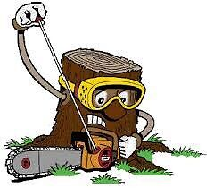 Best Price Stump Grinding- fast availability