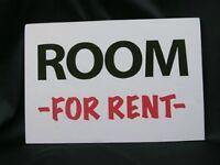 XL Room for rent in Tillsonburg