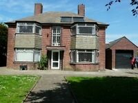 Double Room in large detached house, Milehouse, off road parking, garden