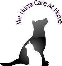 Vet Nurse Care At Home Perth Perth City Area Preview