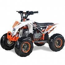 KIDS 70CC ATV / QUAD - FULL AUTO - FULLY ASSEMBLED! Jimboomba Logan Area Preview