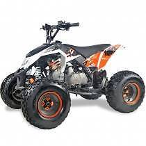 125CC SPORTS QUAD /ATV - FULLY ASSEMBLED Jimboomba Logan Area Preview