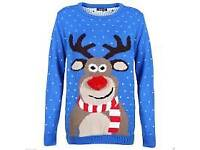 Ruldolph unisex xmas jumpers