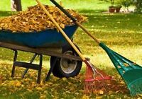 Yard Maintenance and Cleanup (reasonable rates)